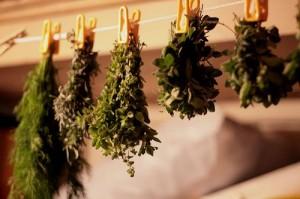 Хранение и сушка трав