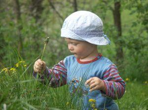 Особенности приготовления сборов для детей