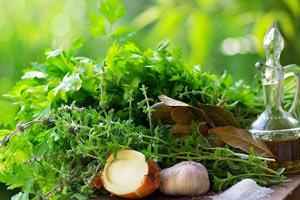 Применение лечебных трав в современной медицине